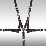 G-Force Racing Junior Racer Camlock Harness Set